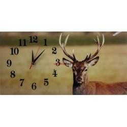 Nástenné hodiny Z330 s motívom kapor