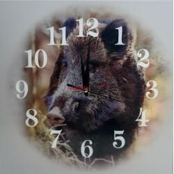 Nástenné hodiny Z330 diviak